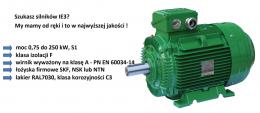 silniki elektryczne asynchroniczne IE3